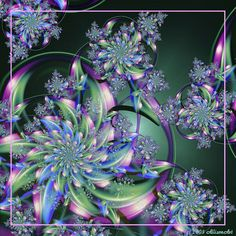 Fractal Photography
