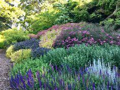Pebble Garden, Acre, Garden Design, Vineyard, Entertaining, Landscape, Plants, Scenery, Vine Yard