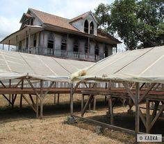 Séchoirs solaires dans l'association de producteurs Plancas à São Tomé // Solar dryers in Plancas association in Sao Tome - ©KAOKA