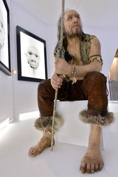 """Meet the ancestors -- exhibition reveals faces of prehistoric humans - A reconstruction of """"Chancelade Man"""" by visual artist Elisabeth Daynes is seen on November 2014 in Bordeaux, France. Charles Darwin, Forensic Facial Reconstruction, Early Humans, Historical Costume, Before Us, Life Tattoos, Anthropology, Ancient History, Archaeology"""