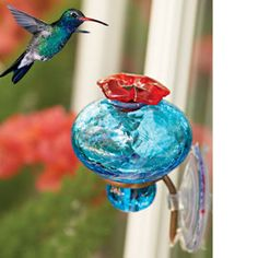 Window Hummingbird feeder. This looks as though it won't leak and brings them in close!