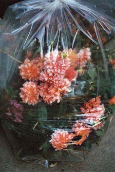 bag o' fleurs.
