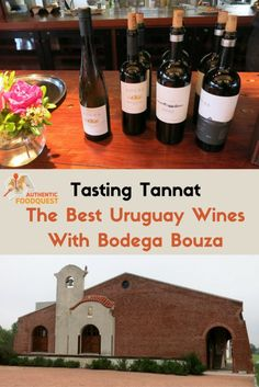 Tannat is the signature grape of Uruguay wines, and is to Uruguay what the Malbec is to Argentina. Given our quest to experience local authentic specialties from around the world, getting to know this special Tannat wine was high our list. Complements of Uruguay4u we had the opportunity to visit a bodega (winery) on the Uruguay wines roads called Bodega Bouza. The visit included a guided tour of the bodega followed by a tasting of Uruguay wines with cheese and charcuterie.