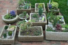 50 Best Funky Garden Ideas Images Garden Outdoor