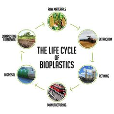 The Lifecycle of Bioplastic.png (534×534)