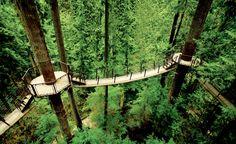 Capilano Suspension Bridge Park, British Columbia, Canada