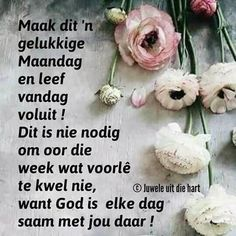 Afrikaanse Quotes, Goeie More, Special Quotes, Words, Van, Wisdom, Night, Friends, Rose