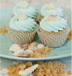 Summer, sea, sand and sea shells are enough reason to put a smile on your face. Well, these are gorgeus looking summer inspired cupcakes. The cupcakes and Seashell Cupcakes, Beach Cupcakes, Summer Cupcakes, Beach Wedding Cupcakes, Simple Cupcakes, Pretty Cupcakes, Beautiful Cupcakes, Chocolate Shells, Chocolate Swirl