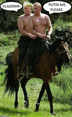 Donald Trump Horseback Riding with Putin: It's about time our two countries got along. Who could think of a better way to bond than sharing a horse ride togethe Putin On Horseback, Horseback Riding, Putin Shirtless, Putin Trump, Trump Meme, Rambo, Caption Contest, Funny Memes, Hilarious