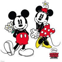 Take a look at the Mickey Mouse & Minnie Mouse Collection on #zulily today!