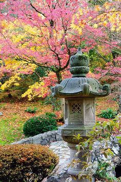 Autumn Japanese Garden Wall Mural | Murals Your Way Seattle Japanese Garden, Japanese Gardens, Zen Gardens, Japanese Stone Lanterns, Murals Your Way, Meditation Garden, Walled Garden, Japanese Architecture, Architecture Design