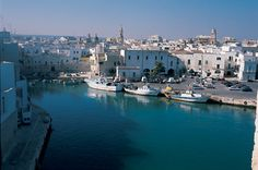 Monopoli, Province of Bari, Italy  (Some of my family on my mom's side is from here)