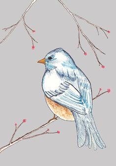 Bird image...85 x 11 Illustration Giclee Print cute sweet by TamaraGarvey