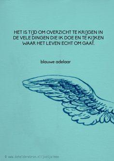 Blauwe adelaar