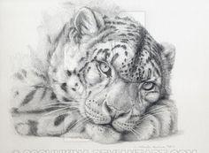 Pensive Snow Leopard by Svetlana Ledneva Schukina Leopard Tattoos, Snow Leopard Tattoo, Graphite Drawings, Cat Drawing, Wildlife Art, Beautiful Cats, Big Cats, Animal Drawings, Cat Art