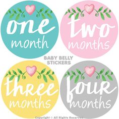 Baby Month Stickers Monthly Baby Stickers Monthly Milestone