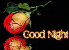 Good Night #goodnight boa noite ingles rosas