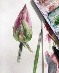 "4,270 Likes, 8 Comments - Watercolor illustrations 🎨 (@watercolor.illustrations) on Instagram: ""🎨 Watercolorist: @natalialevshina_art  #waterblog #акварель #aquarelle #painting #drawing #art…"""