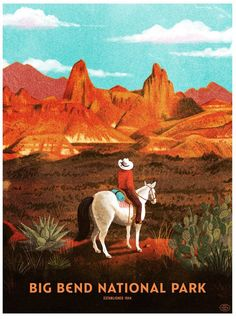 Big Bend National Park Poster by Brave the Woods