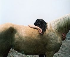 Have you ever wrapped your bare arms around the neck of a horse, and taken deep, deep breaths in his mane? While he just stands there and lets you? Or better yet, when he rests his head of your shoulder and just stands there. O my word. Horses are just the best thing God could give a girl.
