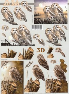 1 A4 sheet of owls decoupage paper This sheet is a step by step sheet which means you are shown which parts to cut out Very easy  Perfect for the