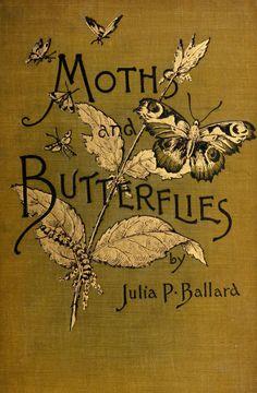 Moths and Butterflies by Julia P. Ballard  1890