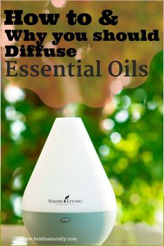 Learn how to diffuse essential oils and which oils are best. Get all the information about diffusers, scents, and health benefits of diffusing oils in homes. #essentialoils #diffuser #essentialoildiffuser #ultrasonic #diffusers #artificial #artificialfragrances #vaporize #vaporizer #youngliving #diffuseoils #Thieves #lavender #Peace&Calming #Joy #Frankincense #orange #citrusfresh #pureessentialoils via /heidinaturally/