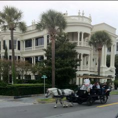 Charleston SC--we took a buggy ride just like this. Beautiful architecture and lots of history.