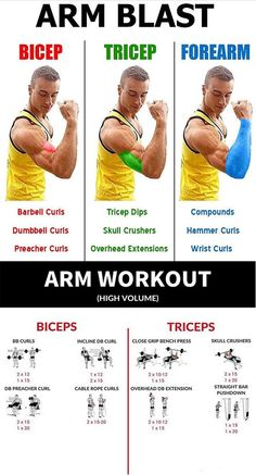 Get A Skin Shredding Arm Pump With This One Workout… - Fitness Tipps Gym Workout Tips, Weight Training Workouts, At Home Workouts, Workout Fitness, Food Workout, Interval Training, Workout Routines, Sport Fitness, Body Fitness