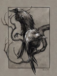 saulone: Huginn & Muninn from the Poetic Edda (Norse Mythology) by Daniel Govar - #INKtober day 5