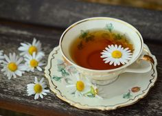 Benefits of drinking chamomile tea range from reducing stress to improving heart health. People around the world have used chamomile tea as a . Chamomile Tea Benefits, Herbs For Sleep, Best Herbal Tea, Herbal Teas, Gerd Diet, How To Make Tea, Natural Home Remedies, Tea Recipes, Health Remedies