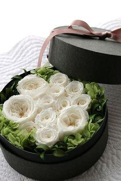 Preserved flower Dozen rose プリザーブドフラワー ボックスフラワー ダズンローズ http://www.fleuriste-glycine.jp/