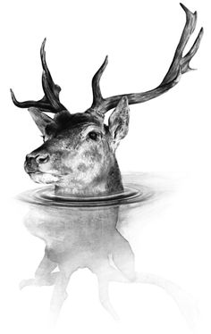 Creative Deer, Timlaing, Uk, and Illustration image ideas & inspiration on Designspiration Deer Art, Illustration Art, Illustrations, The Design Files, Oh Deer, Art Graphique, Painting & Drawing, Art Drawings, Cool Art