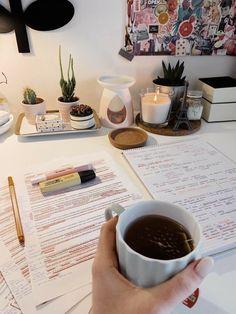 Study Desk, Study Space, Studyblr, Study Corner, Study Organization, Nursing Organization, Study Pictures, School Study Tips, Study Areas