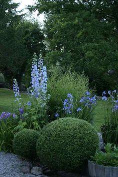 Trädgårdsflow: Twilight in the garden...
