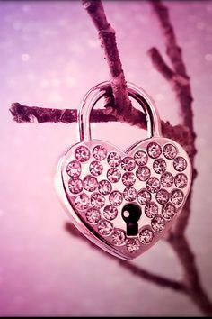 Pink Love Wallpaper Rose Fushia Purple Magenta