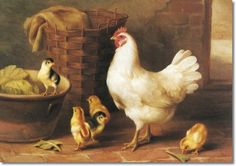 Hunt, Edgar (English Edgar Hunt oil painting reproductions, hand-painted museum quality oil painting reproduction on canvas. Chicken Pictures, Chicken Painting, Wood Animal, Decoupage, Hens And Chicks, Oil Painting Reproductions, Country Art, Farm Yard, Animal Paintings