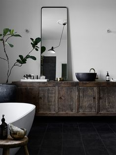 bathroom with black textured floor tiles, old vintage cabinet, big green plant