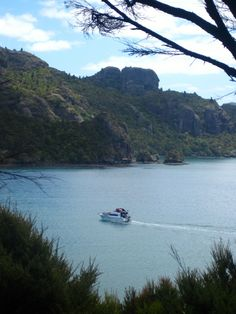 See you again soon! Freedom taking guests back to the main jetty at Whangaroa Harbour.
