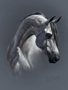 Why does the AI put portraits of horses into gorgeous women. Horse Drawings, Animal Drawings, Arabian Art, Horse Artwork, Horse Portrait, Alpacas, Animal Paintings, Horse Paintings, Pastel Art