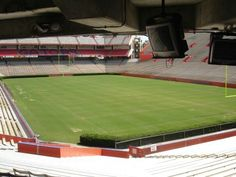 Another view of the Swamp