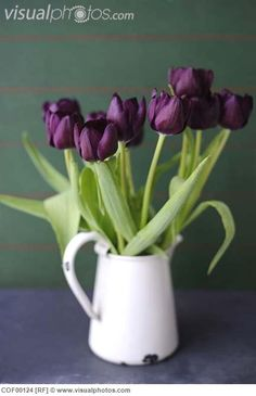 Tulips in vase, close up