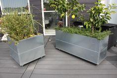 Lands mobila odlingslåda 40 x 80 cm eller 40 x 120 cm på hjul gör det enkelt och snabbt att flytta runt på lådorna. Med en hög och tät plantering är blomlådorna perfekta att användas som ett grönt, mobilt vindskydd på terrassen eller som rumsdelare i vardagsrummet. Finns i galvaniserat och obehandlat järn. Storleken är 40 x 120 cm. Alla odlingslådorna är 25 cm höga. Så tillkommer bottenplatta och hjul med totalt 8 cm. Två odlingslådor som staplas på varandra ger en höjd på 50 cm plus…