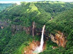 Nohkalikai Falls, Cherrapunjee, India. Nohkalikai Falls is one of the most beautiful and photogenic falls. At 335 meters it is the highest plunge waterfall in India and the 4th highest in the World. Just a 10 minutes drive from main town of Cherapunji, the fall is located at another blunt end of the plateau. The gorge here is green and trees grow like a mini rainforest. From the edge of the cliff the waterfall looked like a white rope in a sea of green forests.