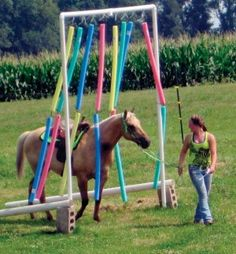 obstacle courses for horses - have seen this with split/cut up shower curtains as well as ropes or water hoses cut and hung. Agility Training For Dogs, Horse Training Tips, Horse Gear, Horse Tips, Horses And Dogs, Show Horses, Dressage, Horse Exercises, Training Exercises