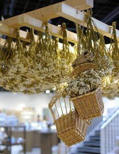 Dried flower by kaz Dried Flower Arrangements, Dried Flowers, Evergreen Flowers, Deco Floral, Floral Design, Flower Ceiling, Flower Boxes, Hanging Baskets, Flower Crafts