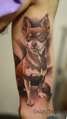 chihuahua tattoo, color tattoo, portrait