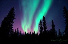 The Northern Lights - God giving us a beautiful light show on Valentine's Day in North Pole, AK