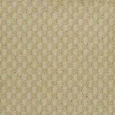 Stainmaster Secret Dream Petprotect Palmetto Berber Carpet