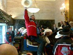 Calgary Stampeders Horse invades Toronto Hotel
